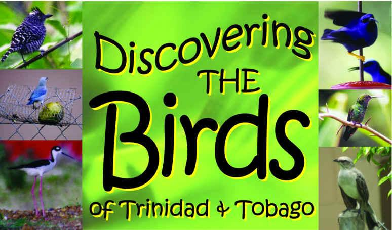 BirdWebGlyph condensed.jpg (119190 bytes)